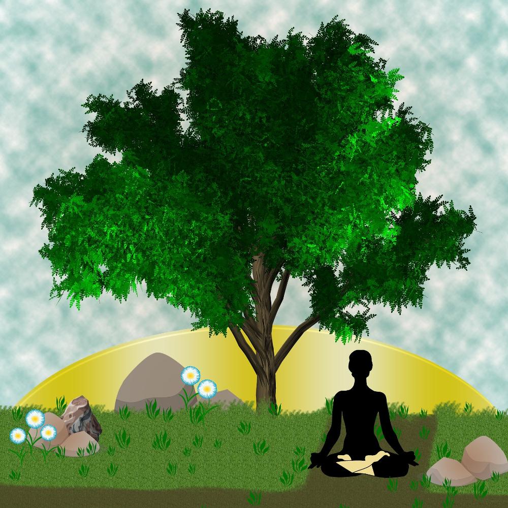 ヨガと瞑想の関係について